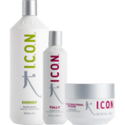 PACK ICON ENERGY 1L. FULLY 250 ML E INFUSION