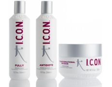 PACK ICON ANTIOXIDANTS FULLY, ANTIDOTE E INFUSION