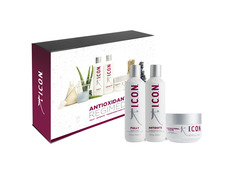 PACK ICON ANTIOXIDANTS FULLY, ANTIDOTE UND INFUSION